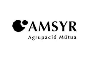 AMSYR-SEGURO-MEDICO